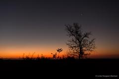 Solnedgang i Sydafrika